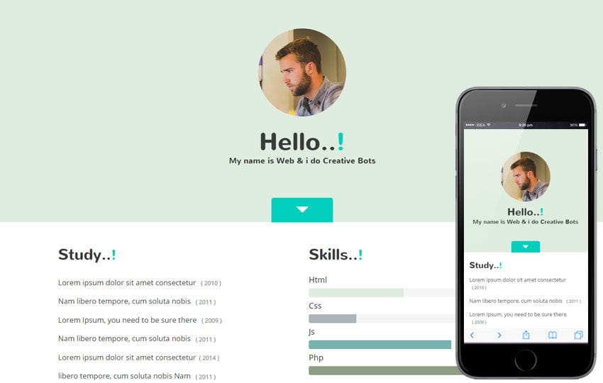 My Skills a Personal Portfolio Flat Bootstrap Responsive Web Template Mobile website template Free