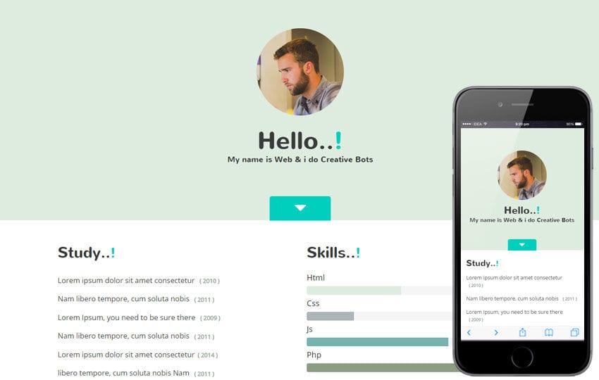 My Skills a Personal Portfolio Flat Bootstrap Responsive Web Template