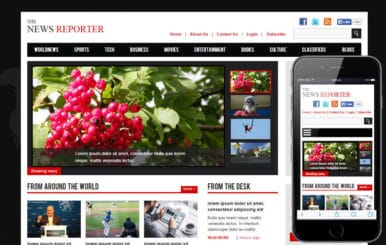The New Reporter a Entertainment Category Flat Bootstrap Responsive Web Template