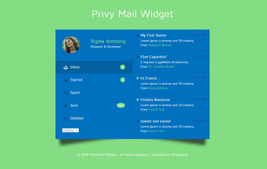 Privy Mail Widget Responsive Widget Template