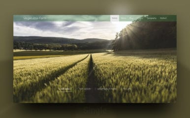 Vegetable Farm a Agriculture Category Responsive Web Template