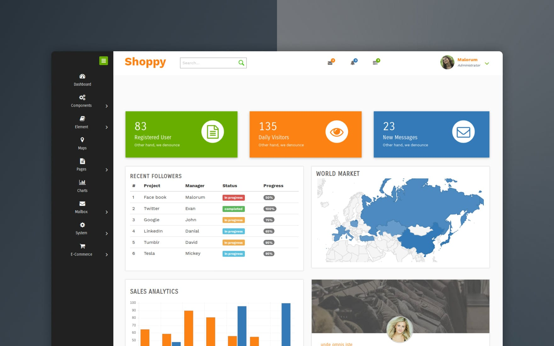 Shoppy E-commerce – Admin Panel Responsive Website Template