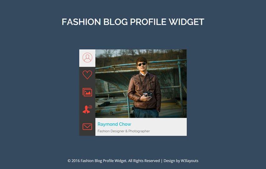 Fashion Blog Profile Widget A Flat Responsive Widget Template