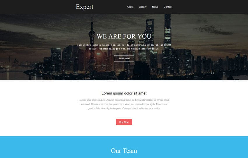 Expert a Newsletter Template Mobile website template Free