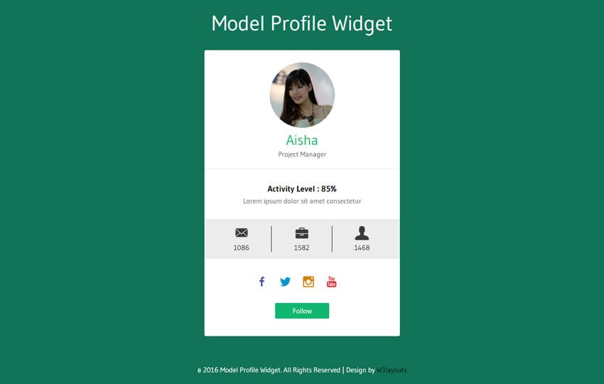 Model Profile Widget Flat Responsive Widget Template Mobile website template Free