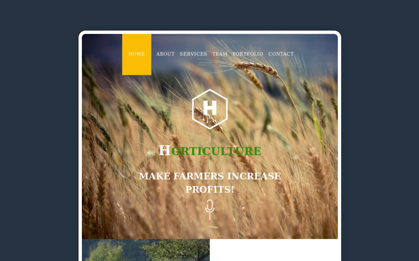 Horticulture a Newsletter Template