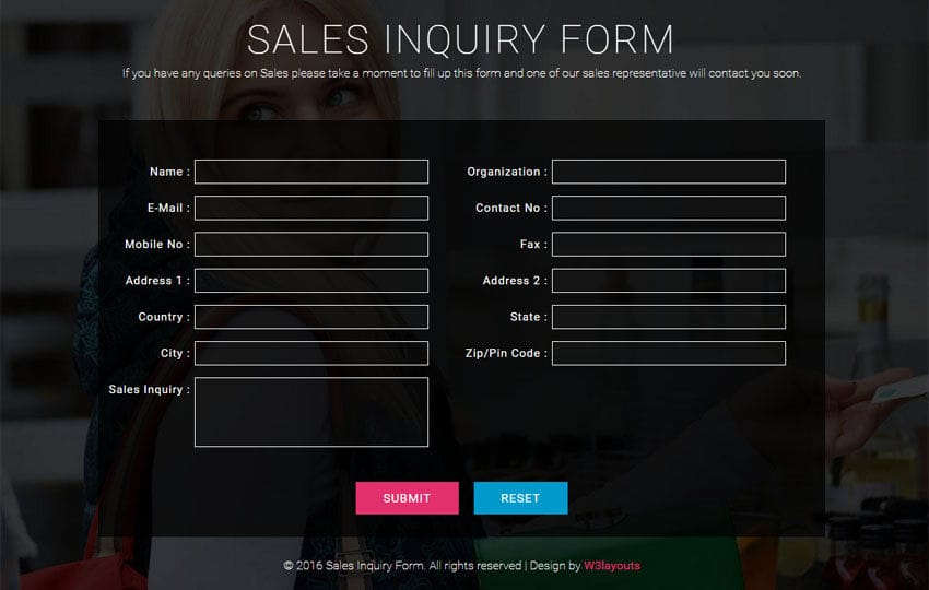 Sales Inquiry Form Responsive Widget Template