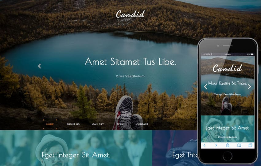 Candid a Photo Gallery Category Flat Bootstrap Responsive Web Template Mobile website template Free
