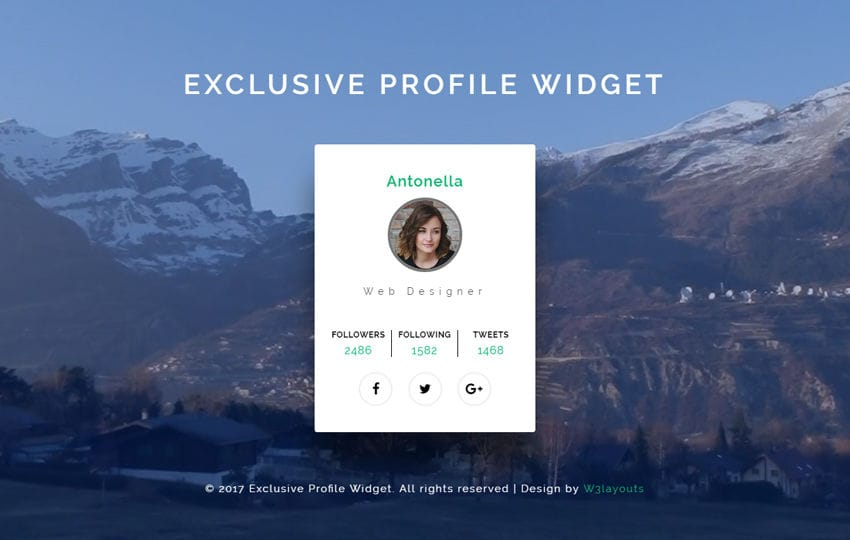 Exclusive Profile Widget a Responsive Widget Template