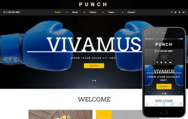 Punch a Sports Category Bootstrap Responsive Web Template
