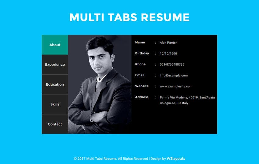 Multi Tabs Resume Widget a Flat Responsive Widget Template