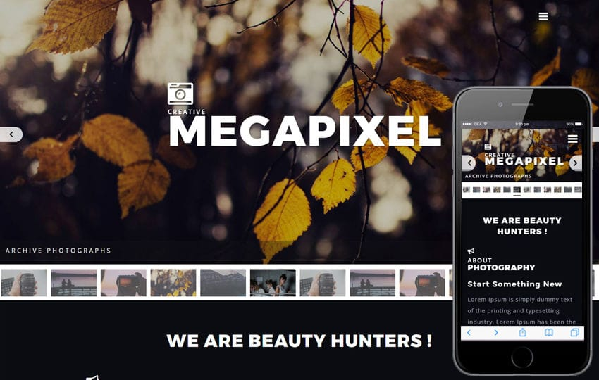 Megapixel a Photo Gallery Category Bootstrap Responsive Web Template Mobile website template Free