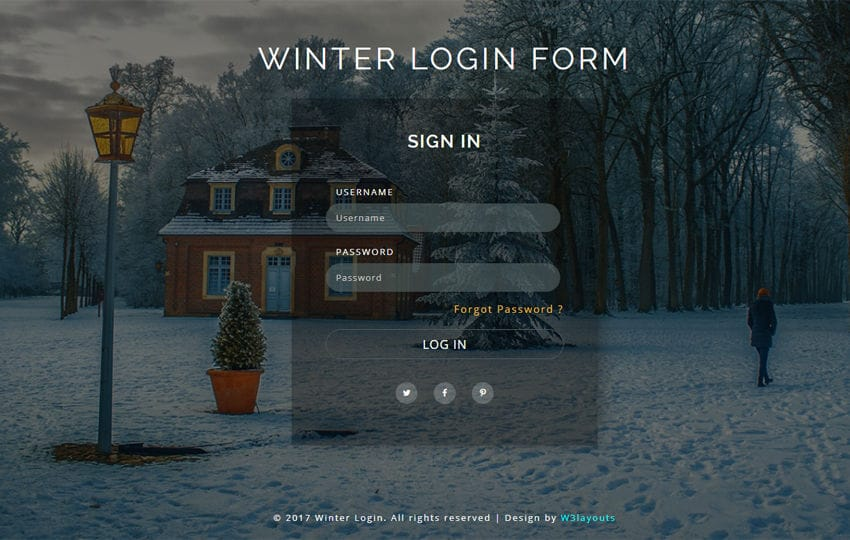 Winter Login Form a Flat Responsive Widget Template