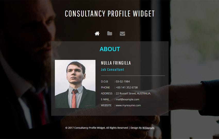 Consultancy Profile Widget a Flat Responsive Widget Template