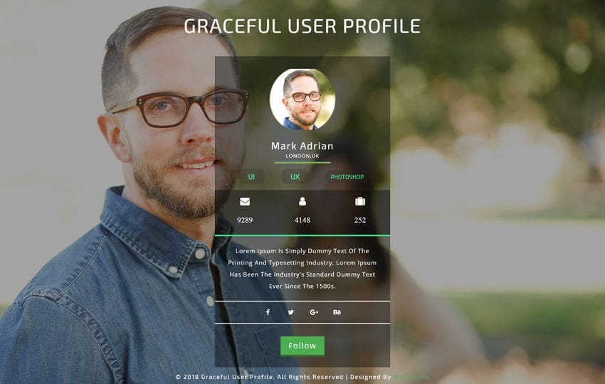 Graceful User Profile Responsive Widget Template