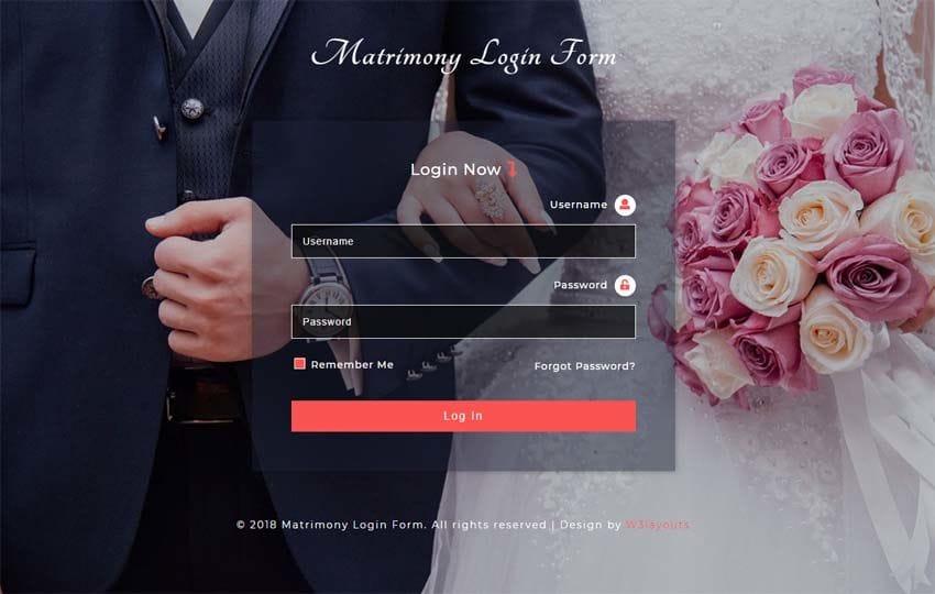Matrimony login form