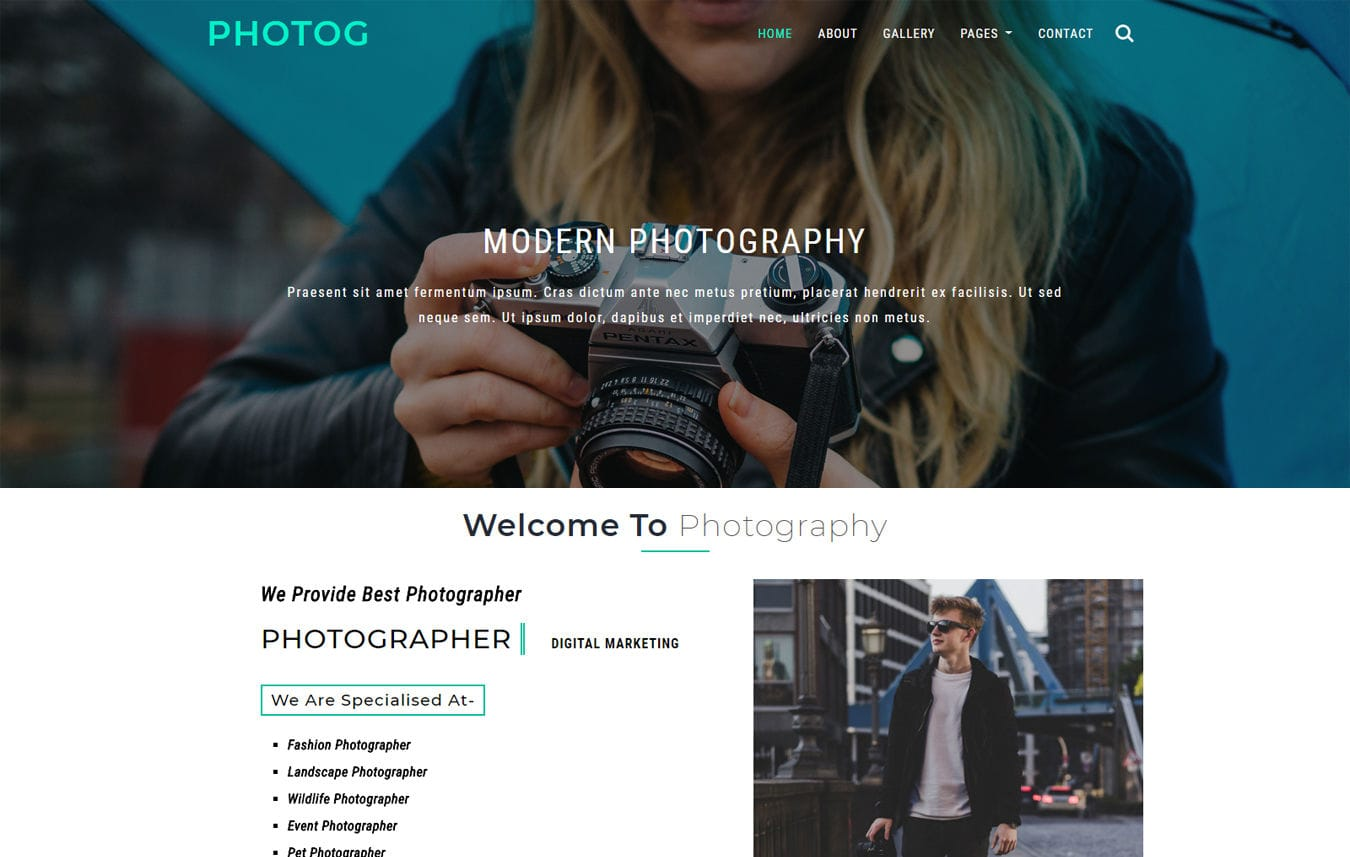 Photog a Photo Gallery Category Bootstrap Responsive Web Template Mobile website template Free