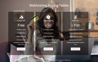 Web Hosting Pricing Table Flat Responsive Widget Template