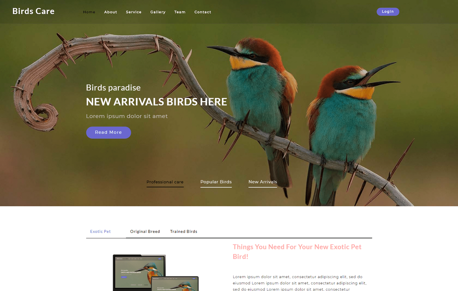 Birds Care an Animals Category Bootstrap Responsive Web Template Mobile website template Free