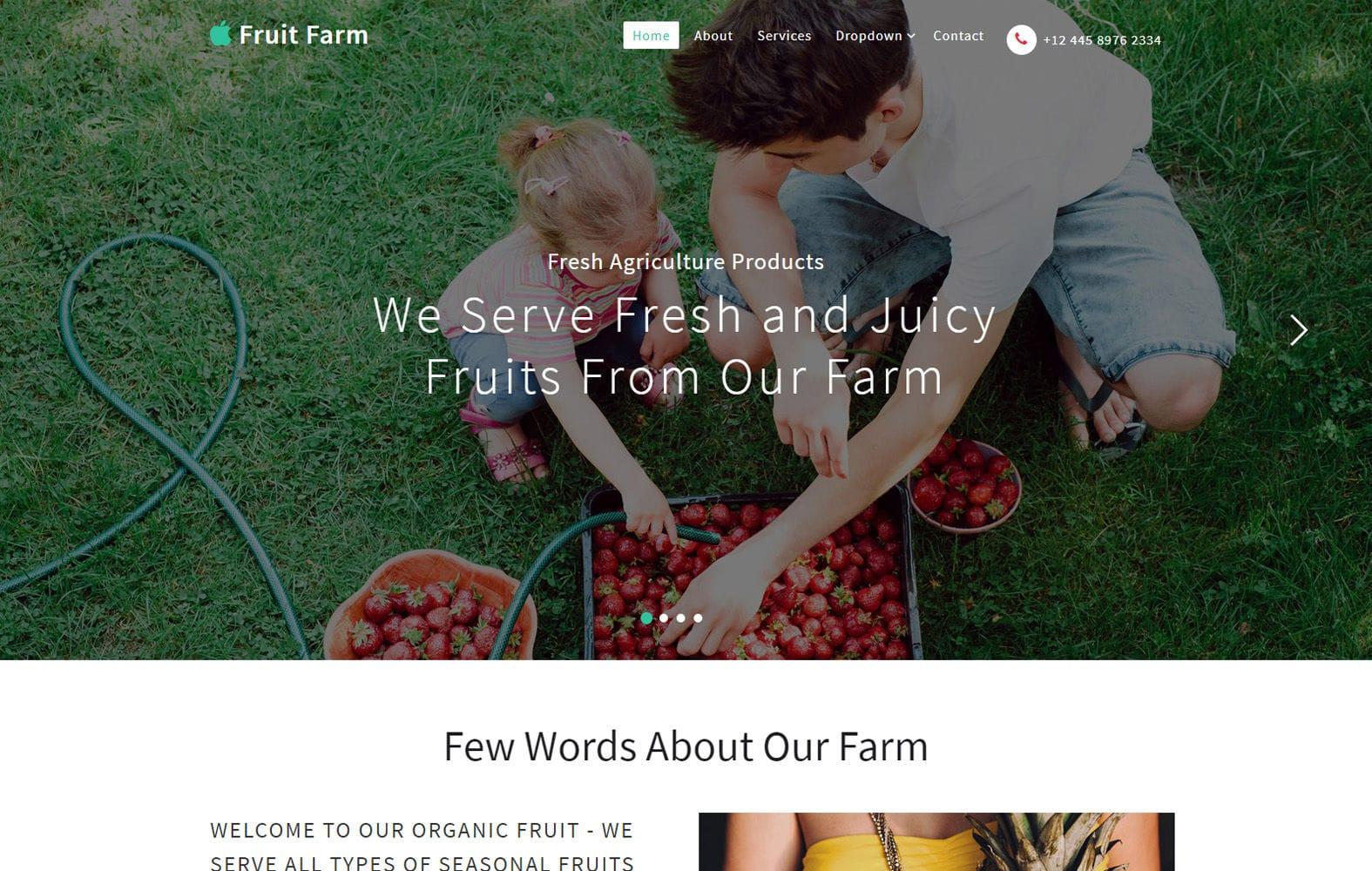 Fruit Farm an Agriculture Category Bootstrap Responsive Web Template Mobile website template Free