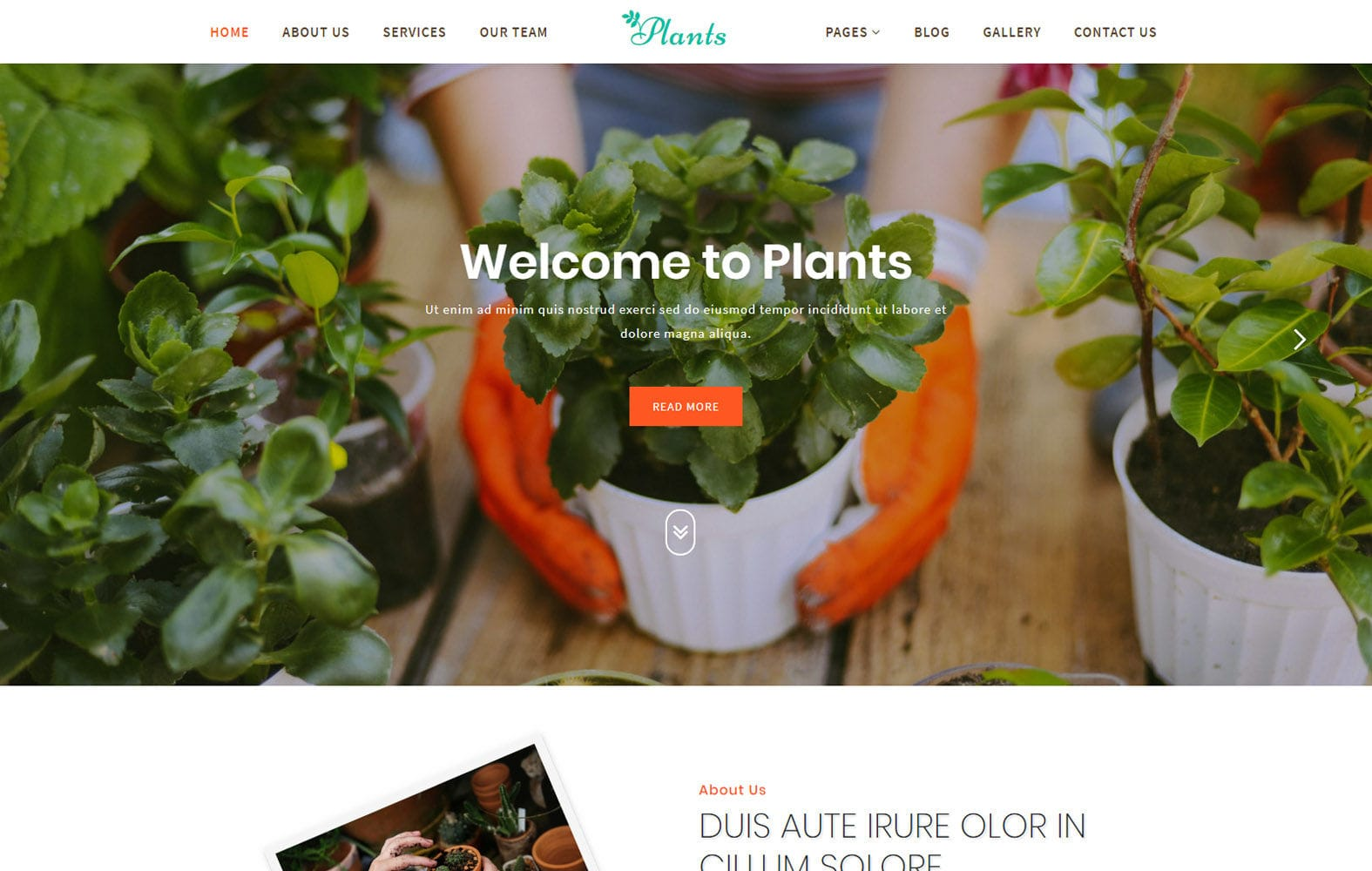 Plants an Agriculture Category Bootstrap Responsive Web Template Mobile website template Free