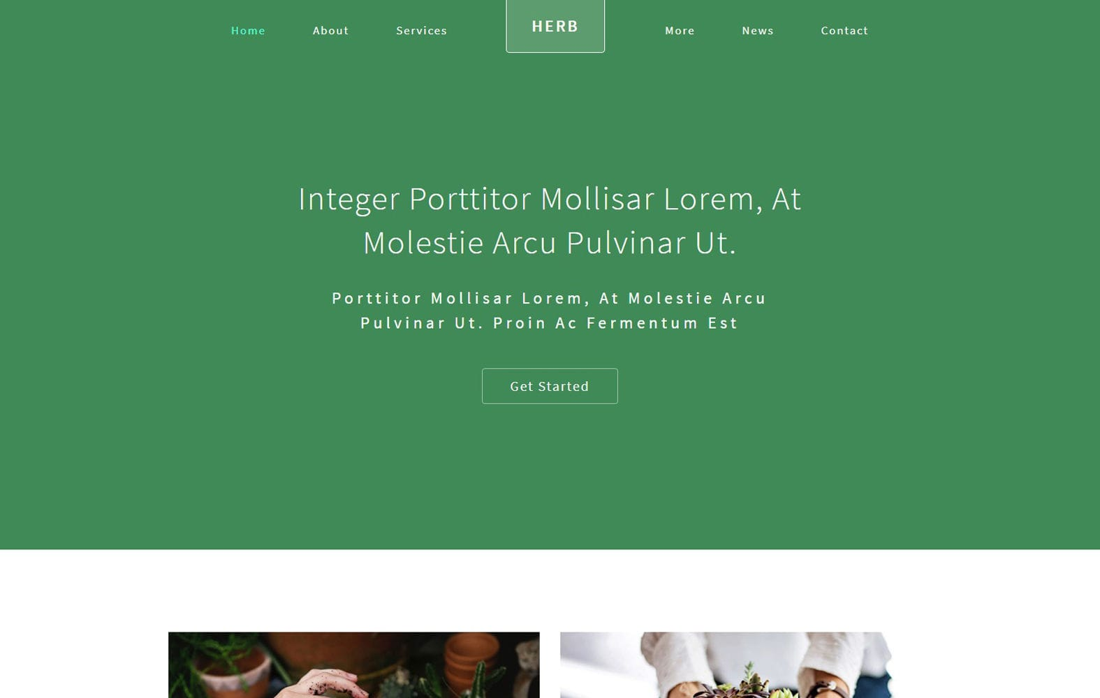 Herb an Agriculture Category Bootstrap Responsive Web Template Mobile website template Free