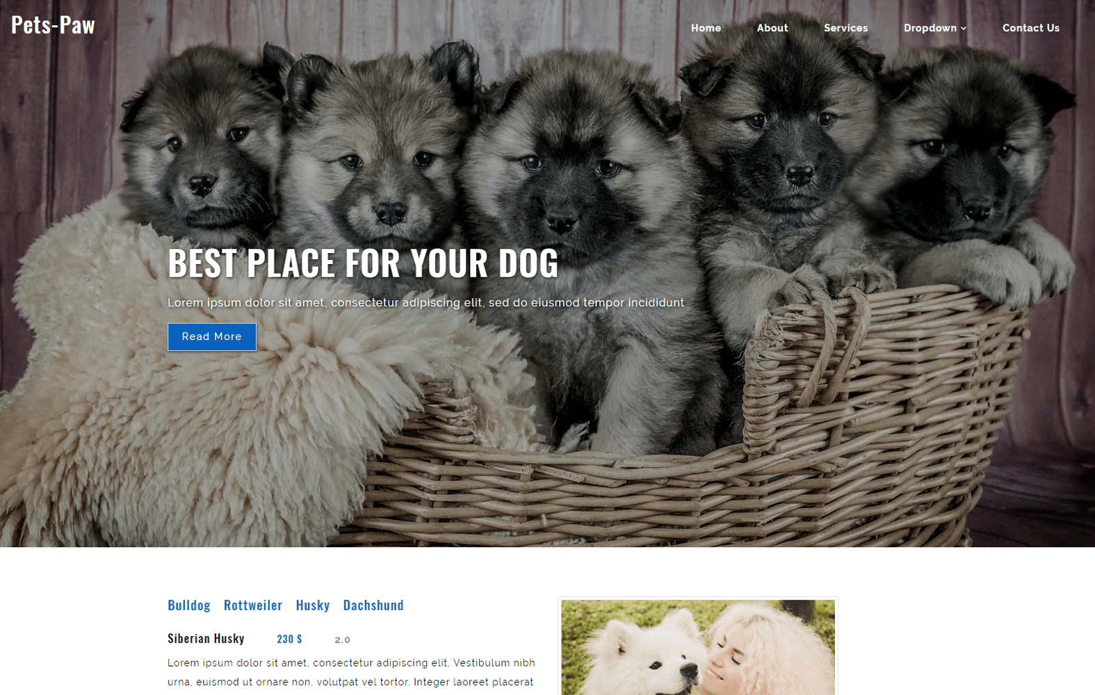 Pets Paw an Animals Category Flat Bootstrap Responsive Web Template Mobile website template Free
