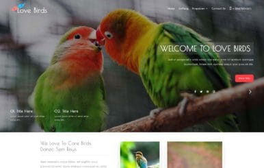 Love Birds – Animals & Pets Category Bootstrap Responsive Web Template