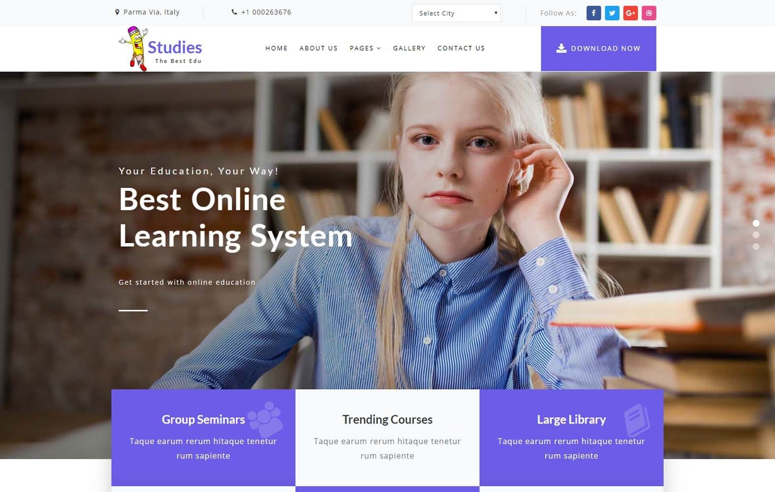 Studies an Education Category Bootstrap Responsive Web Template Mobile website template Free
