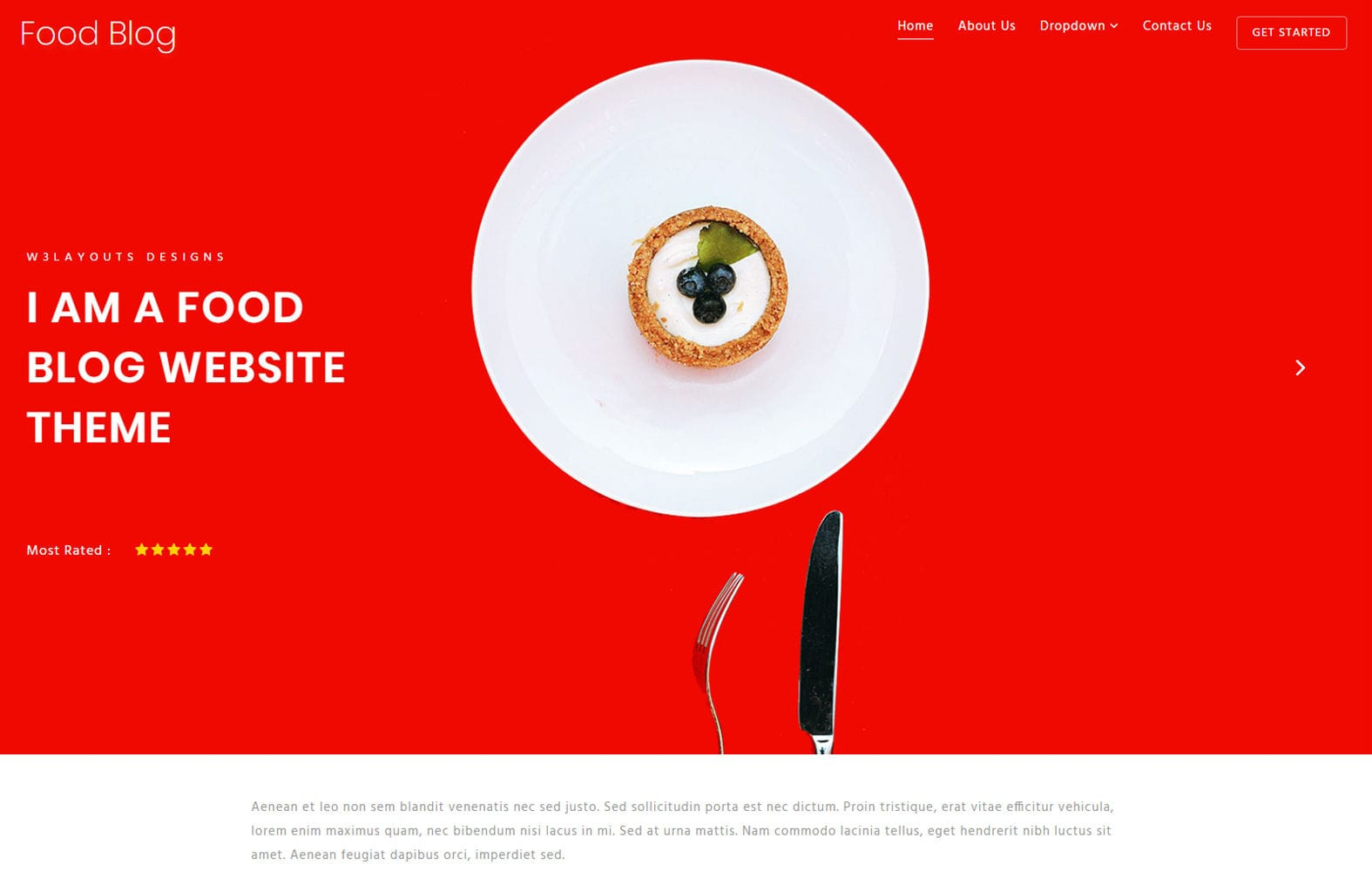 Food Blog – Blogging Category Bootstrap Responsive Website Template Mobile website template Free