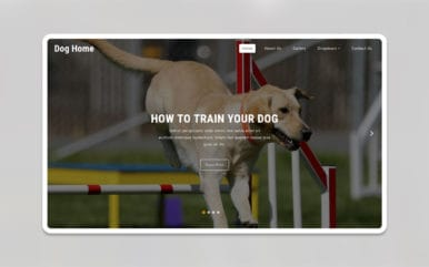 Dog Home – Animals & Pets Category Bootstrap Responsive Web Template