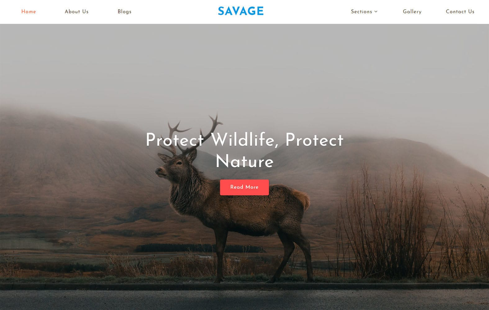 Savage Animals Category Bootstrap Responsive Web Template Mobile website template Free
