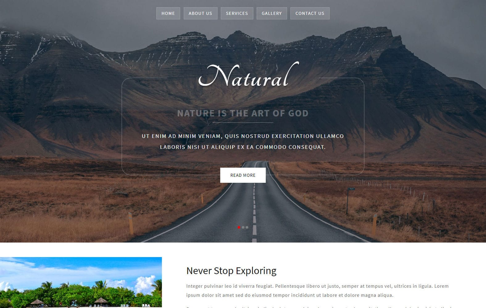 Natural a Multipurpose Flat Bootstrap Responsive Web Template Mobile website template Free