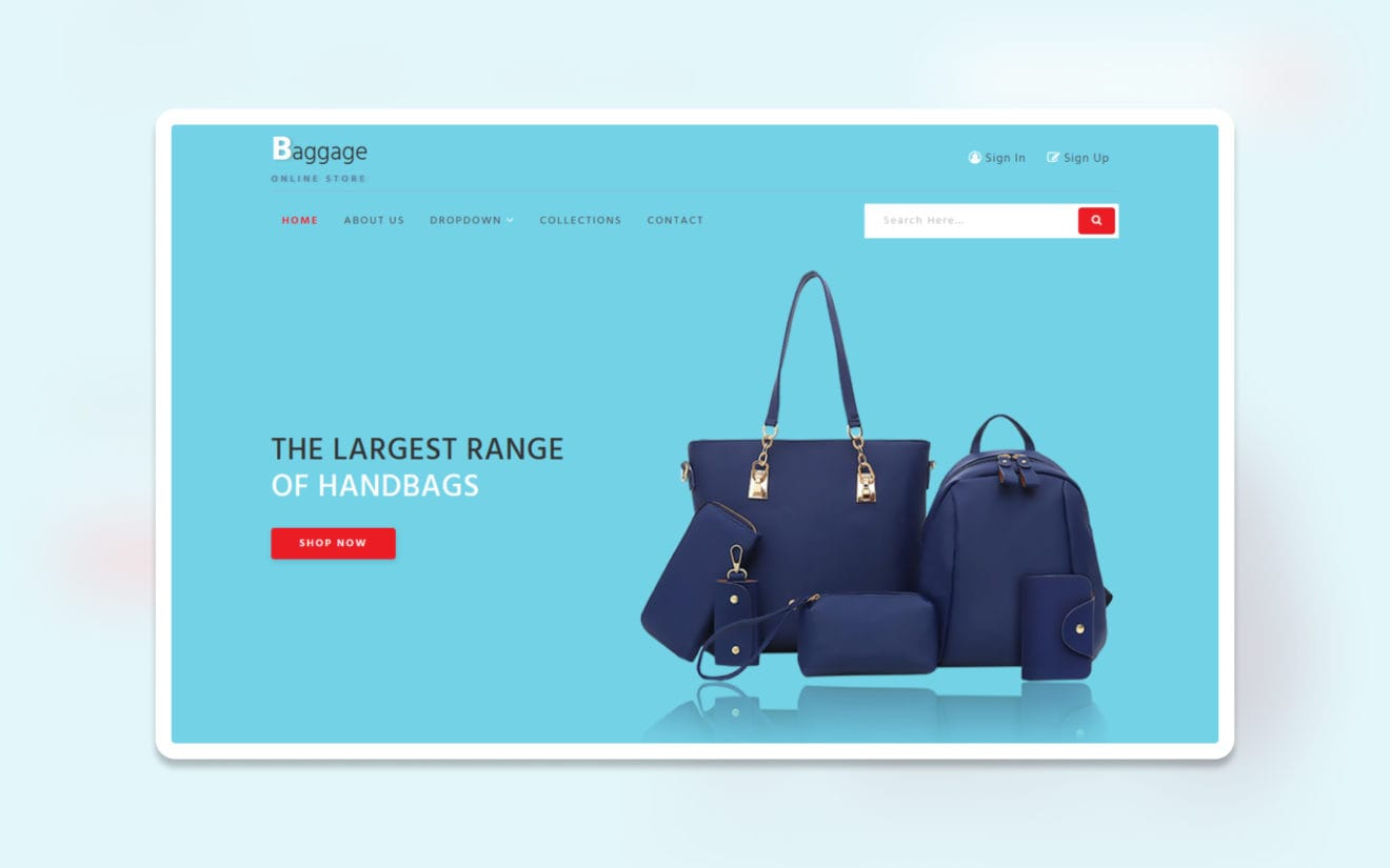 baggage ecommerce website template
