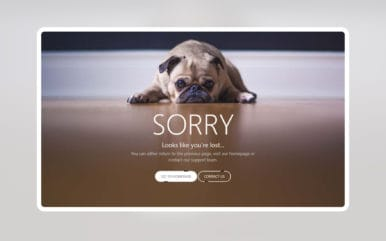Pug Error Page Widget Template