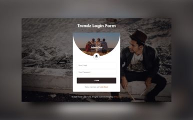 Trendz Login Form Web Element